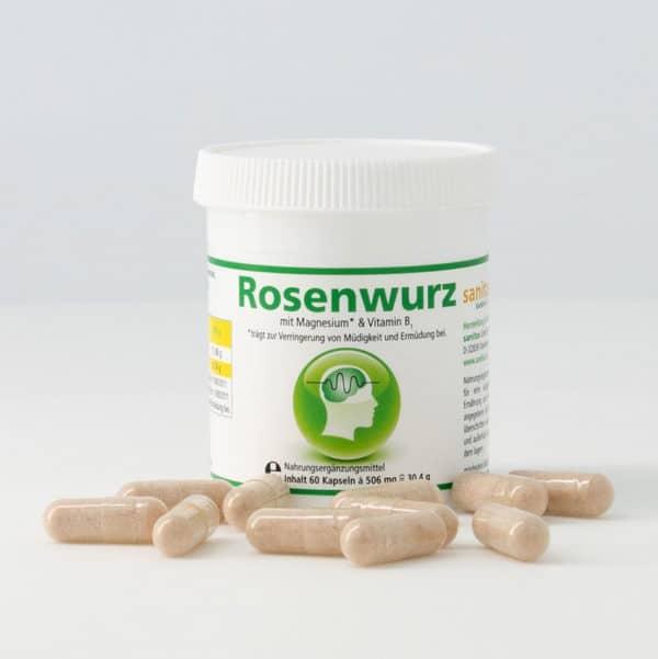 Rosenwurz_2_caesaro-med_950